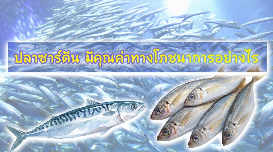 ปลาซาร์ดีน